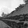 Izapa Pyramids in Chiaps Mexico 6