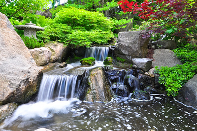 More at the Japanese Garden