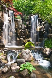 At a Japanese garden
