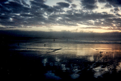Early Morning Low Tide