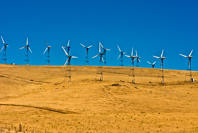 Wind Farm up in the hills of Alameda County