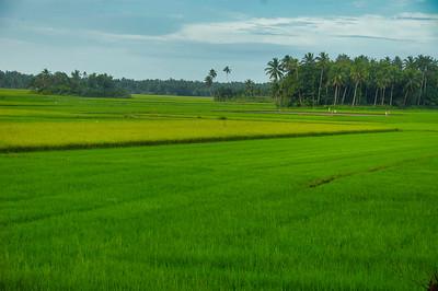 Beautiful Dangcalan