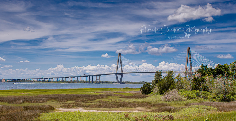 Arthur Ravenel Jr Bridge (Cooper River)