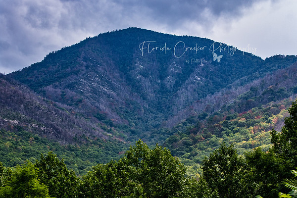 Carlos C. Campbell Overlook, Great Smoky Mountains National Park