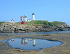 Double Nubble
