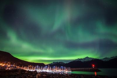 "ALASKA 0860  ""Eagle Aurora""  Haines, AK"