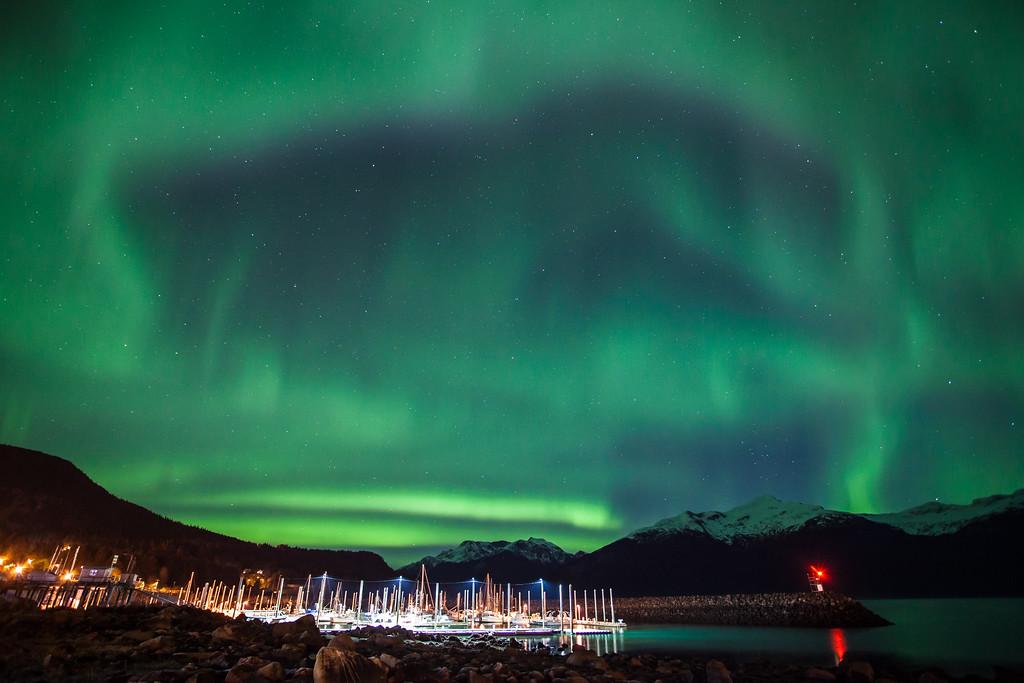 "ALASKA 0853<br /> <br /> ""Aurora Bear""<br /> <br /> Haines, AK"
