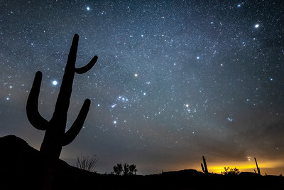 """Spring Nights in the Southern Arizona Desert"""