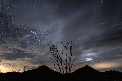"""Kofa Mountains, Ocotillo and Orion"""