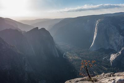 "CALIFORNIA 03623  ""El Capitan and Yosemite Valley from Taft Point""  Yosemite National Park"