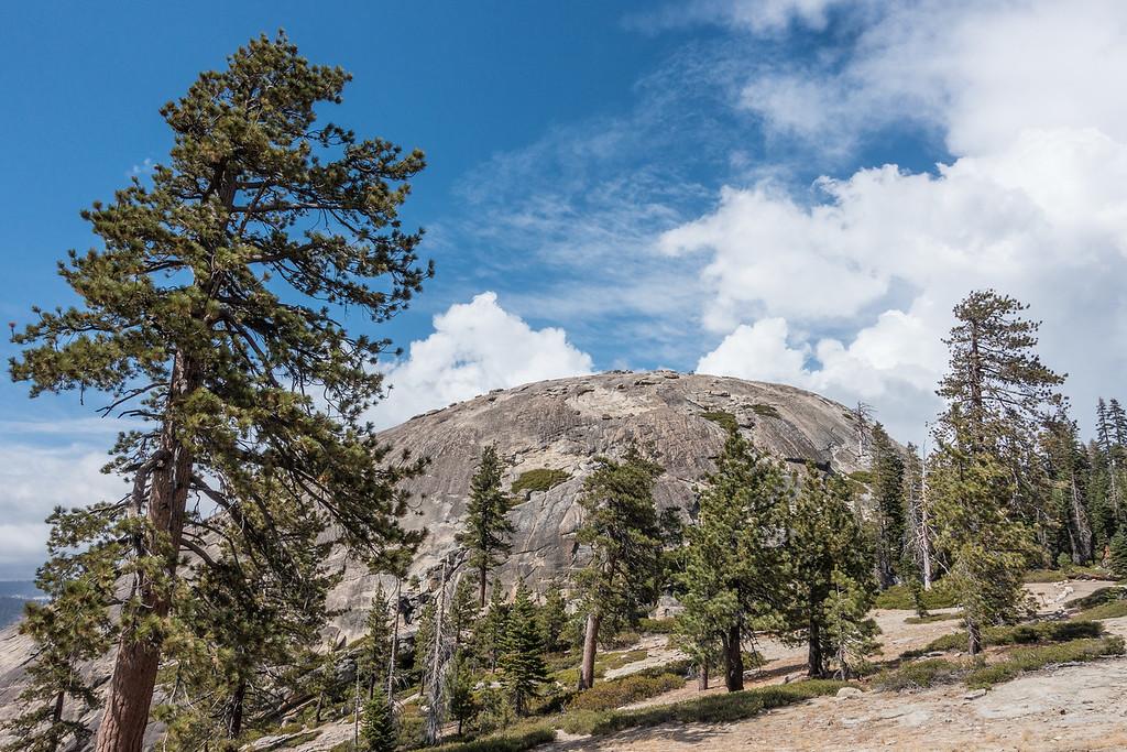 "CALIFORNIA 03545<br /> <br /> ""Sentinel Dome""<br /> <br /> Yosemite National Park"
