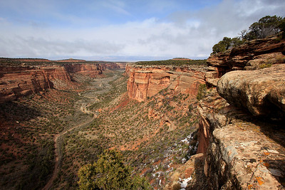 "COLORADO 7817  ""Ute Canyon""  Colorado National Monument"