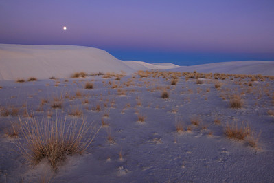 "NEW MEXICO 4957  ""New Year's Dawn at White Sands""  A full moon sets at dawn on January 1, 2010 at White Sands National Monument."