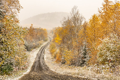 """Fall Colors and First Snow"""
