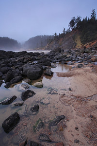 "OREGON 2946  ""Rocky Coast, Ecola State Park"""
