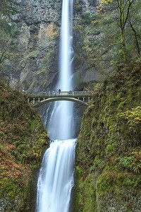 "OREGON 7929  ""Multnomah Falls""  Columbia River Gorge National Scenic Area"