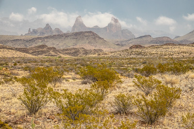 """Afternoon Storms over the Mule's Ears"""