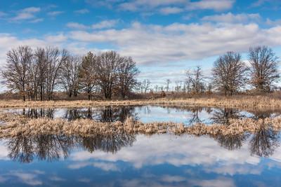 """WISCONSIN 09079  """"Crex Meadows Serenity""""  Crex Meadows Wildlife Area - Grantsburg, WI"""