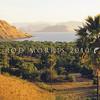 21003-50002  Komodo dragon (Varanus komodoensis) savannah habitat with Lontar palms in late afternoon. Loho Kalo, Komodo Island *