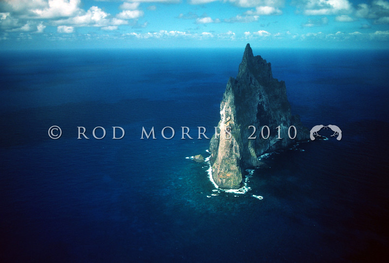 11711-00512 Ball's Pyramid, a rock pinnacle rising 548m high and located 19km south of Lord Howe Island, was the site of a remarkable discovery in 2001, when the Lord Howe 'land lobster', thought to have been extinct since the 1920's, was spectacularly rediscovered living here.