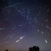 Perseid Meteors and One Sporadic