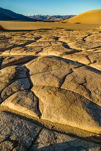 Mesquite Dunes Floor