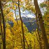 Aspen Valley Trail Color