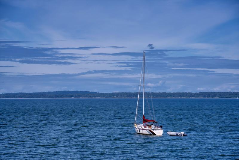 Red Sail on Bellingham Bay