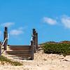 Monterey Beach Trail