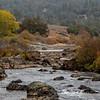 S Fork American River Autumn Oil