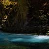 McKenzie River Blue