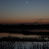Crescent Moon Over the Cosumnes Wetlands