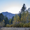Mount Tallac at Sunset from Fallen Leaf Lake Meadow Dressed in Autumn Color