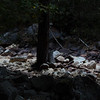 Tenaya Creek in Yosemite National Park