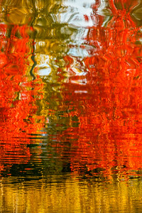 Autumnal Reflections #2