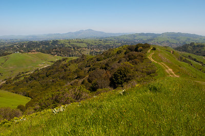 Mt Diablo seen from Sibley Volcanic Regional Preserve, Oakland, CA in April 2011.