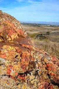 Coyote Hills Regional Park, Fremont, in November 2013.