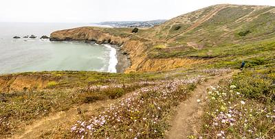 Coastal trails near Mori Point and Rockaway Beach in Pacifica, California. July 2018.