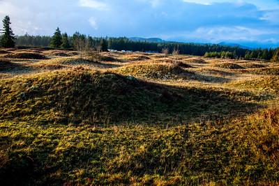Mima Mounds Natural Area Preserve, WA, December 2016.