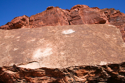 Dinosaur footprint, Spider Mesa, Utah. September 2006.