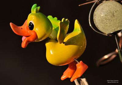 Hot Chick ©Debra Fisher Goldstein-1246