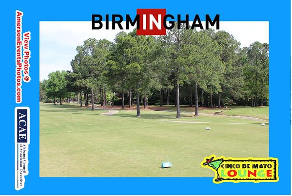 Birmingham CVB ACAE 2013