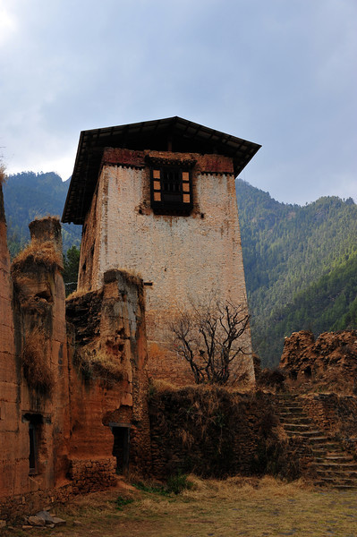 Fortress (hilltop of course) - burnt down by a stray candle left burning during a Paro Tsechu some years ago