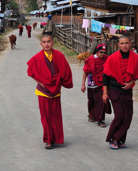 Hip, cool and trendy monks