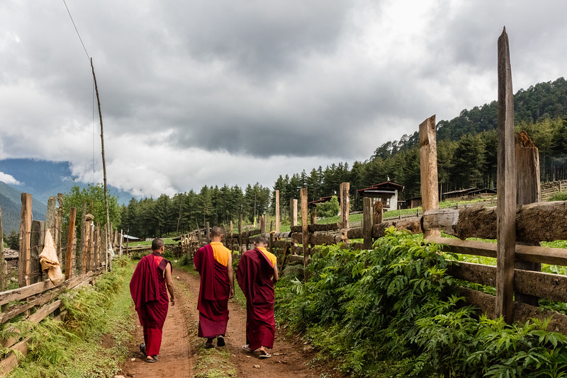 Phobjikha Valley, Bhutan. A trio of monks on a rural road above the valley.