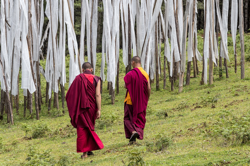 Phobjikha Valley, Bhutan. A pair of monks heads toward a hillside cluster of prayer flags.