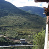 view from Wangdue