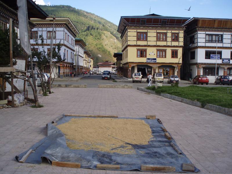 rice drying in Paro