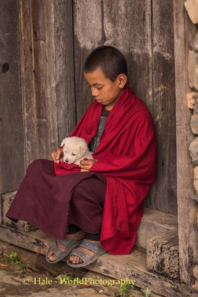 Young Monk and Puppy