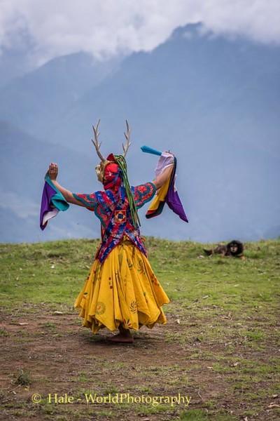 Brokpa Dancer - 1